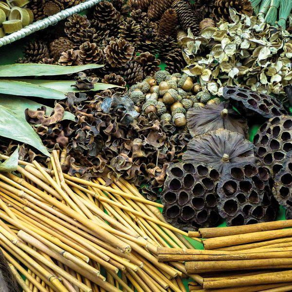 Botanical Treasure Basket Pack